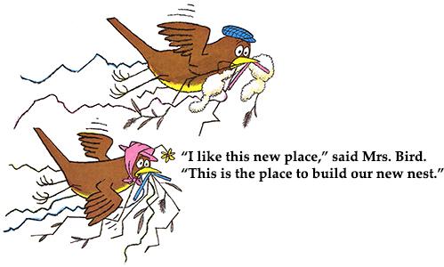The Best Nest Illustration